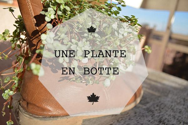 botte pot de fleurs presentation